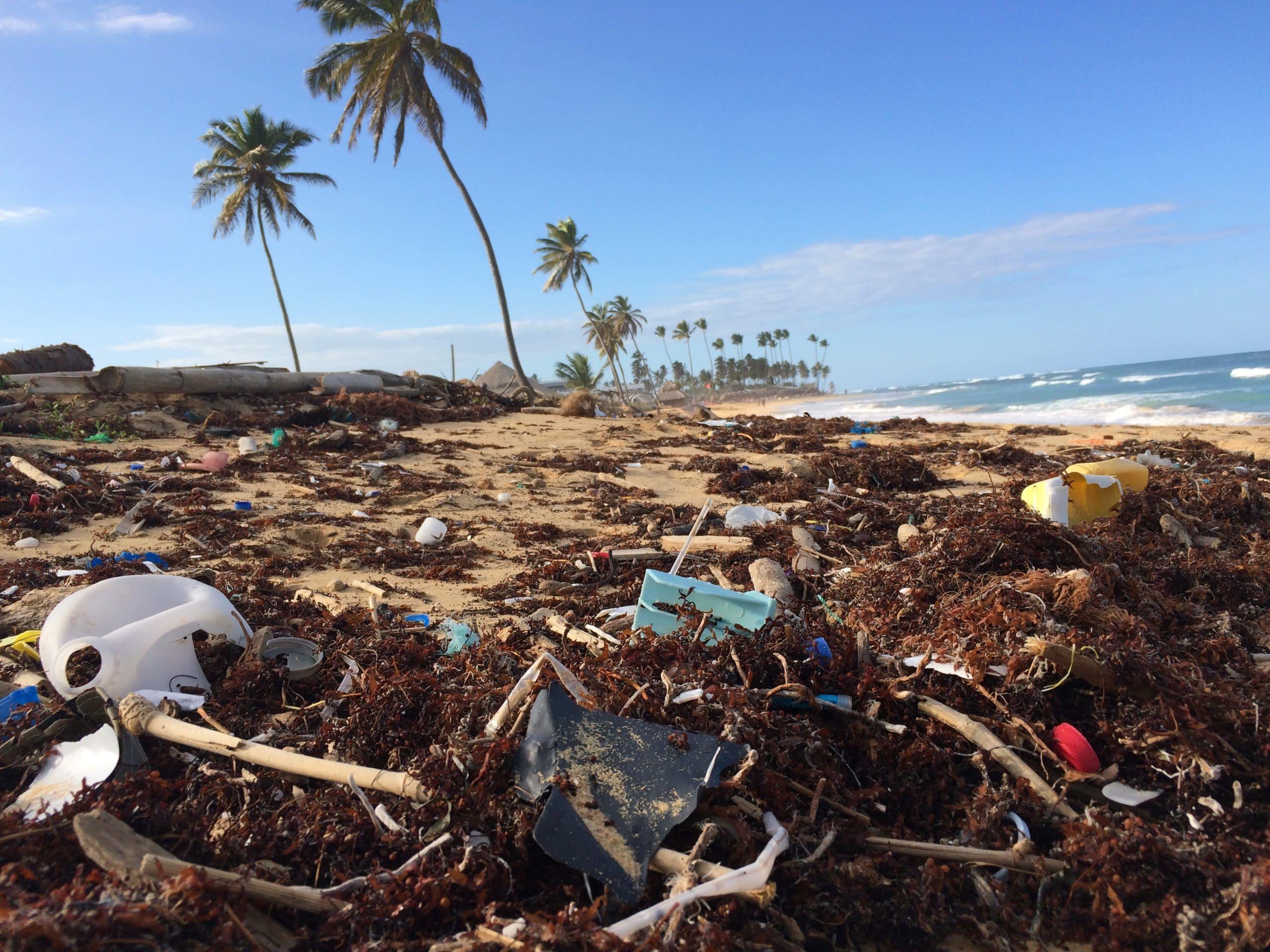 Müll am Strand im Hintergrund Palmen